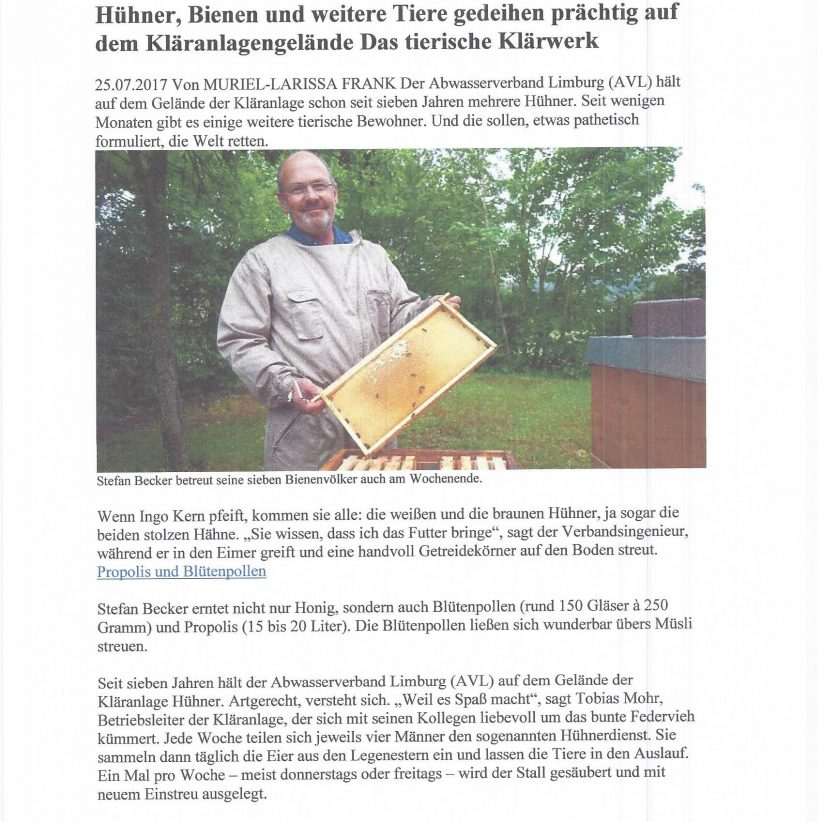 Bienen Kläranlage00010001